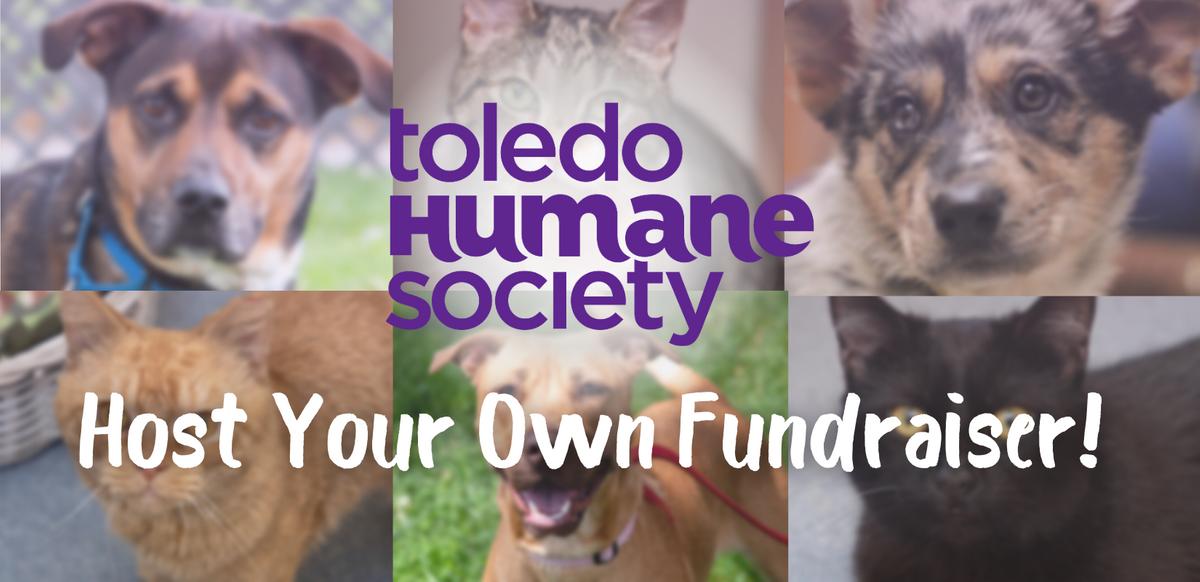Host Your Own Fundraiser! thumbnail